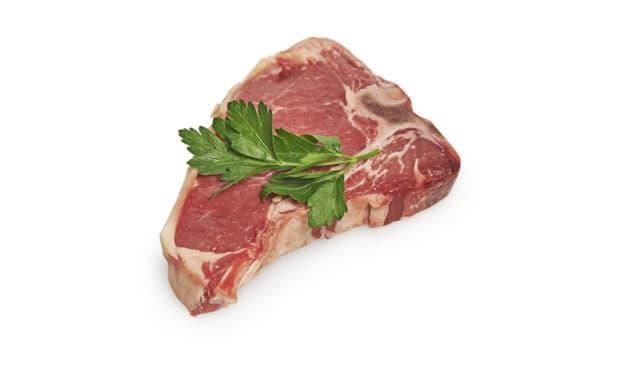 beef t bone steak nicholas duell © 2020 blog dsc 9935
